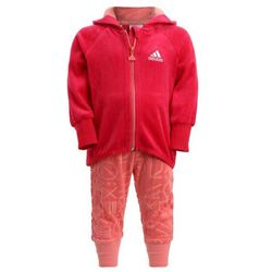 adidas Performance Dres energy pink/tactile rose/white
