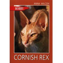 Cornish Rex /Hobby (opr. miękka)
