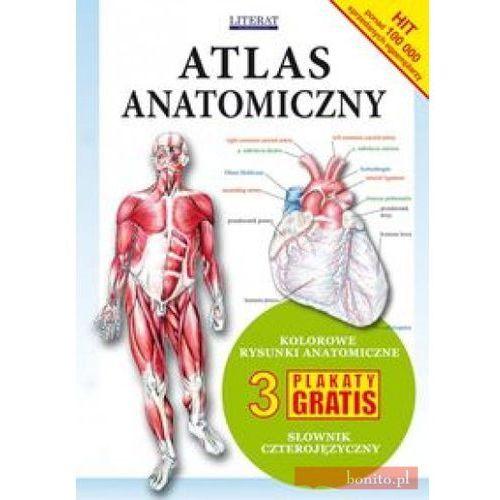 Książki medyczne, Atlas anatomiczny (opr. miękka)