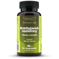 Buzdyganek naziemny 4:1 200 mg 90 kaps. Tribulus terrestris PharmoVit