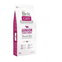 care junior large breed lamb & rice - 12kg marki Brit